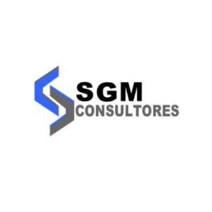 SGM CONSULTORES | Socios COmerciales Mexican Consulting